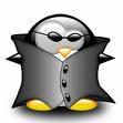 pingouin matrix.jpg
